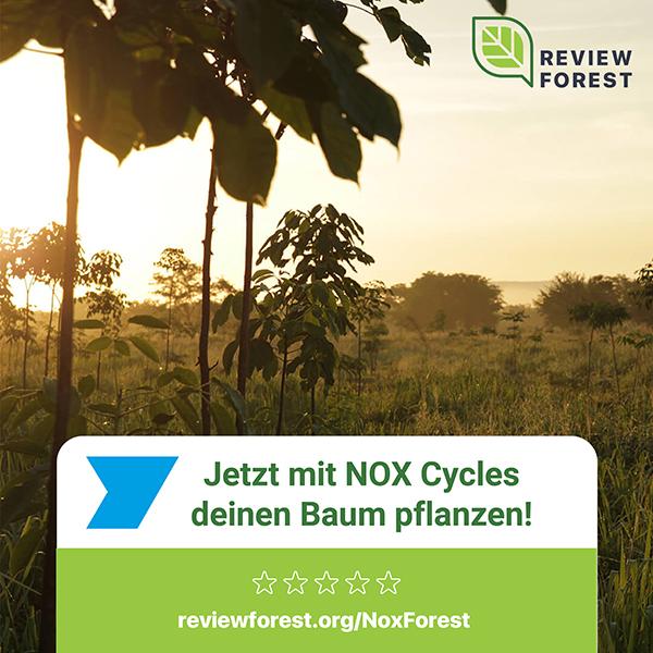 Jetzt-mit-NOX-deinen-Baum-pflanzen_NL